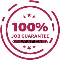 100% Job Guarantee Course